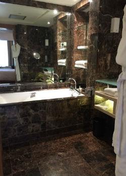 Hyatt Singapore Grand Deluxe Bathroom